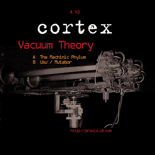praxis48-cortex-vacuum-theory