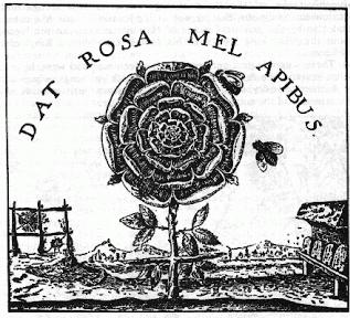 nostradarmas rose
