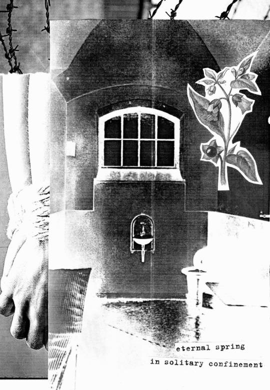vnutrennosti eternal spring in solitary confinement