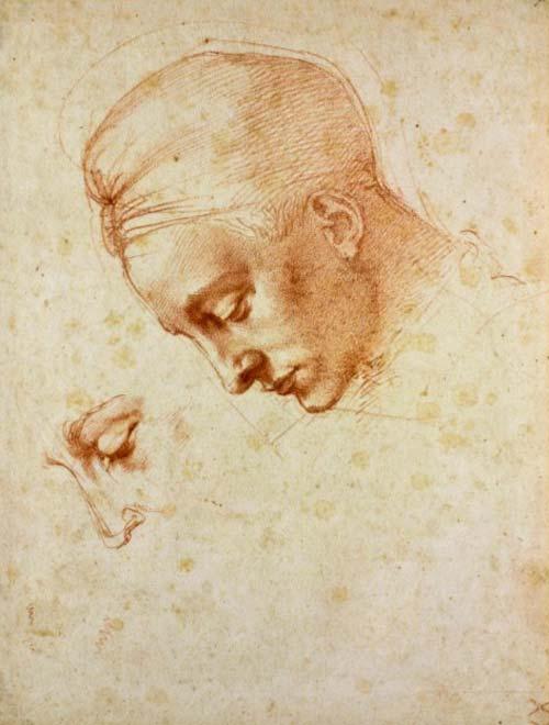 Michelangelo Tommaso cavalieri 3-leda-1