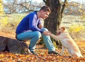 Pria Pecinta Anjing Terlihat Seksi di Mata Wanita