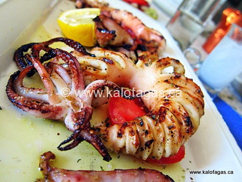 Grilled Calamari and Cumin