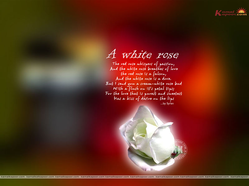 Short Cool Quotes Wallpaper Poems Wallpapers High Quality Poems Wallpapers