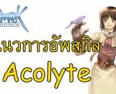 แนวทางการอัพสกิลของอโค Acolyte ทั้งแบบJob40และJob50
