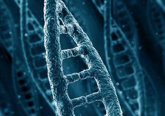 Епигенетика – как средата променя гените ни