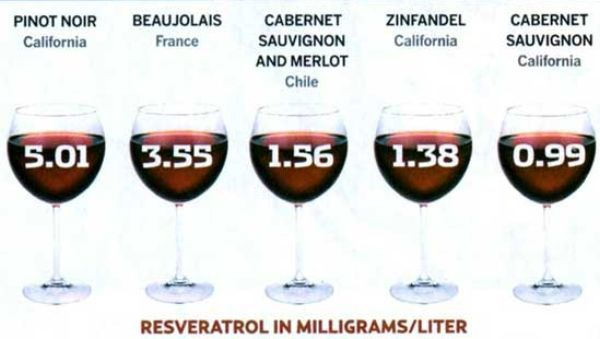 resveratrol-redwine