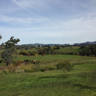Hedberg Hill Wines, Countryside Orange Wine Tours