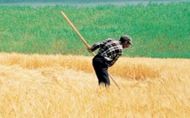 Tarım kredilerinin yeniden yapılandırılması / Ali Ekber Yıldırım