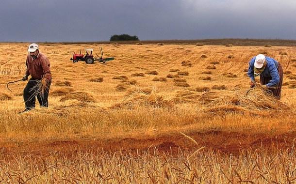 Tarım- ÜFE Ocak ayında %9,51 arttı