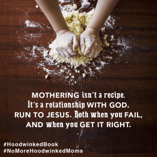 Moms have been hoodwinked—tricked into believing lies that keep them from not only enjoying motherhood, but forging friendships with other moms who might tackle the tasks of motherhood differently. Hoodwinked: Ten Myths Moms Believe and Why We All Need To Knock It Off by Karen Ehman and Ruth Schwenk. There is also a 6-session video Bible study available for group or individual use. Check it out!