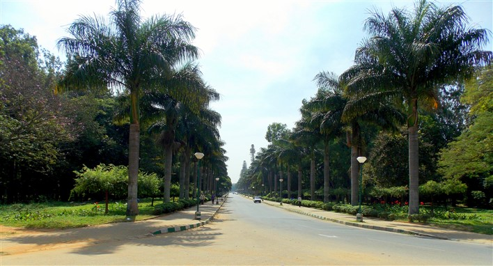 Cubbon Park Road. Photographer Augustus Binu