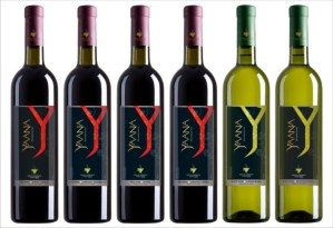 Yaana Wines, Bidar – Premium Wines from Organic Grapes