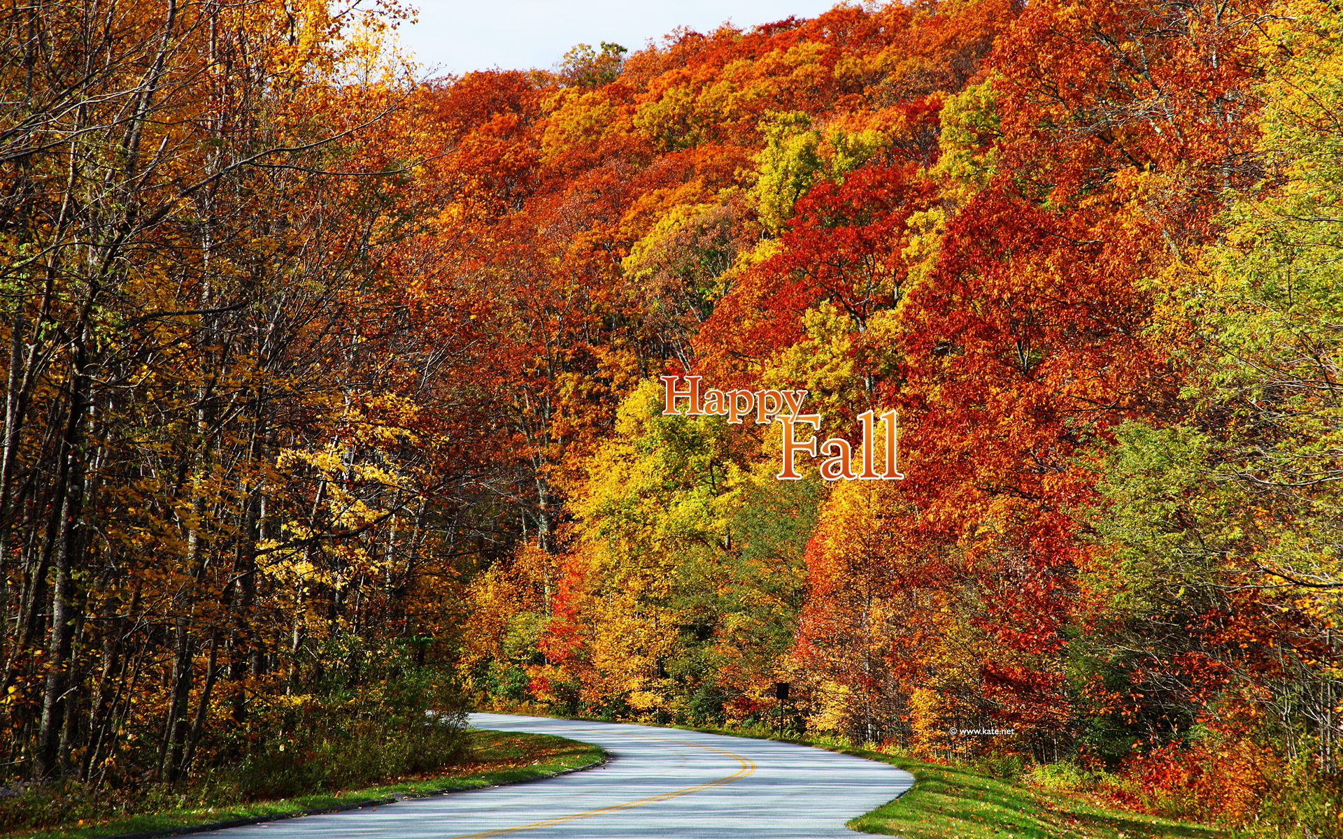 Michigan Fall Colors Wallpaper Fall Wallpapers Fall Facebook Covers Fall Printables By