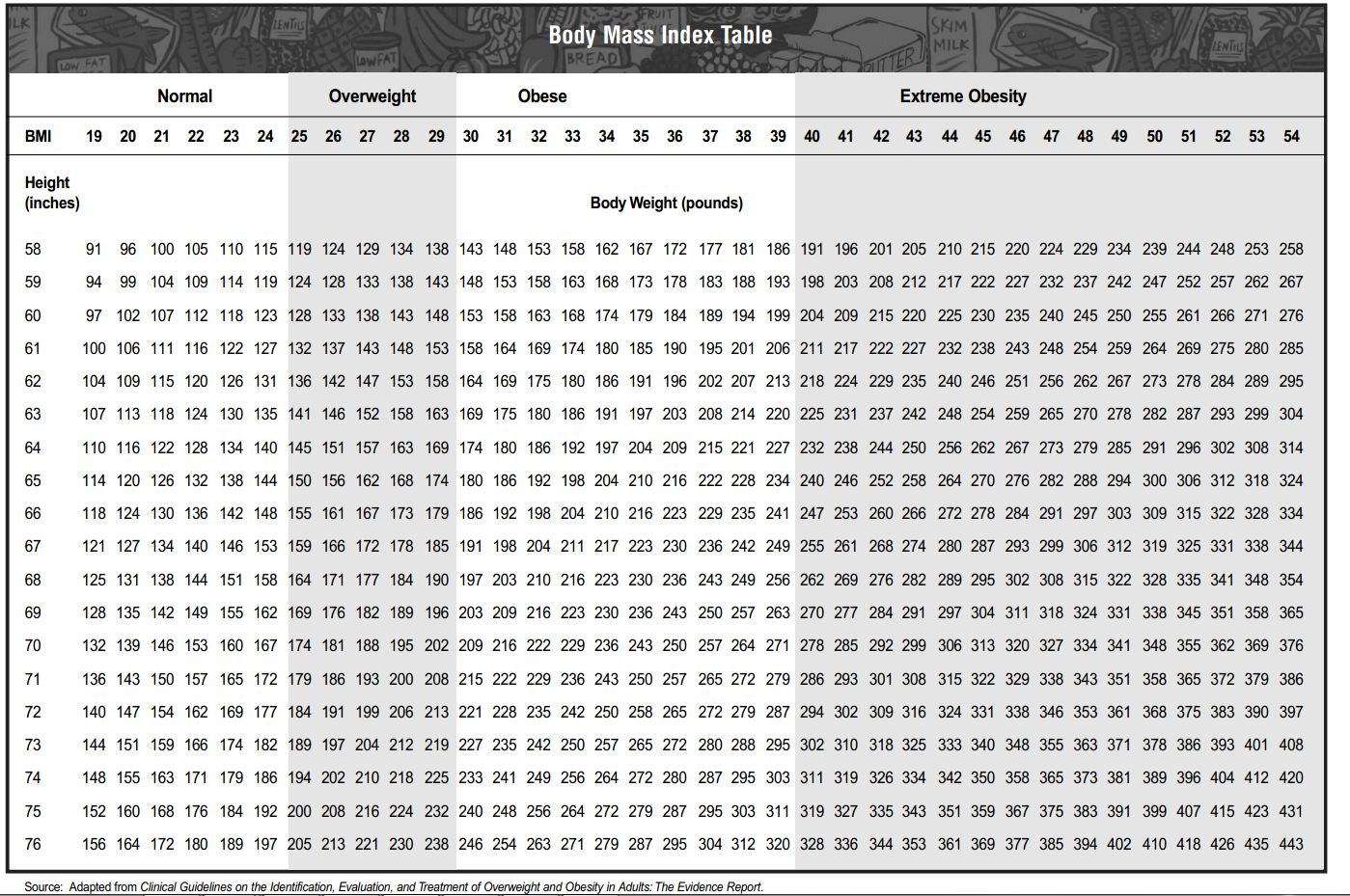 Body Mass Index Calculator Kathy Smith