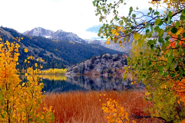 4k Central Park In The Fall Wallpaper The 7 Best Spots For Fall Color In California Kcet
