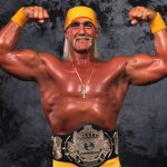 Hulk Hogan hall of fame induction speech