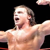 1996 Pro Wrestling Illustrated Top 500 Wrestlers