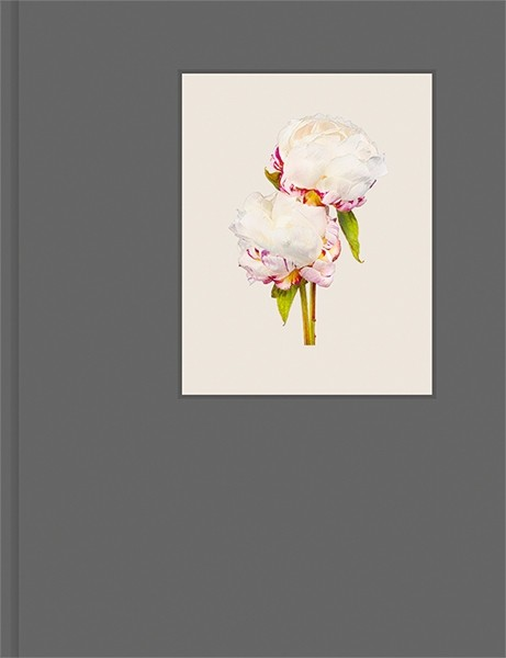 The photobook The Most Beautiful Flowers by Kenji Toma homage to one