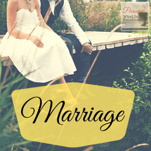 Pursuing What Is Excellent -- Marriage page