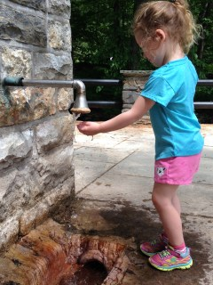 Rayleigh cooling off in the drips from a spring at Spa State Park.