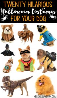20 Hilarious Halloween Costumes for Dogs