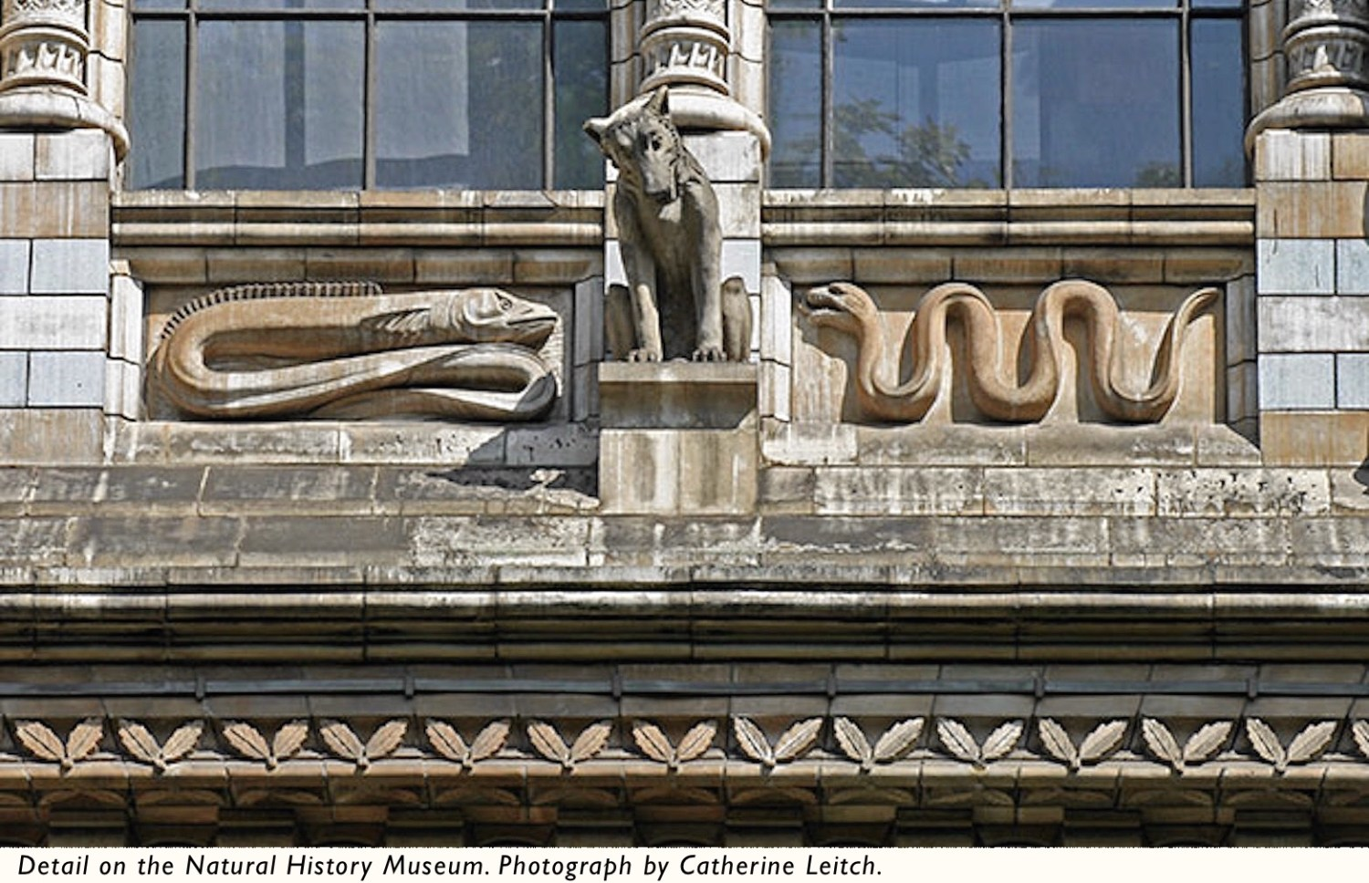 Detail-Natural-History-Museum-Leitch-caption