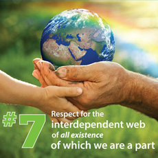 7th principle - interdependent web