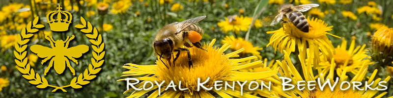 Royal Kenyon BeeWorks Flagstaff Arizona bee removal, local honey, and hand-crafted bee products sent around the world!