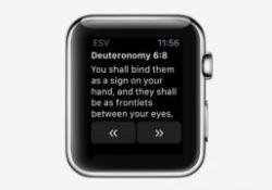olive tree bible app running on apple watch