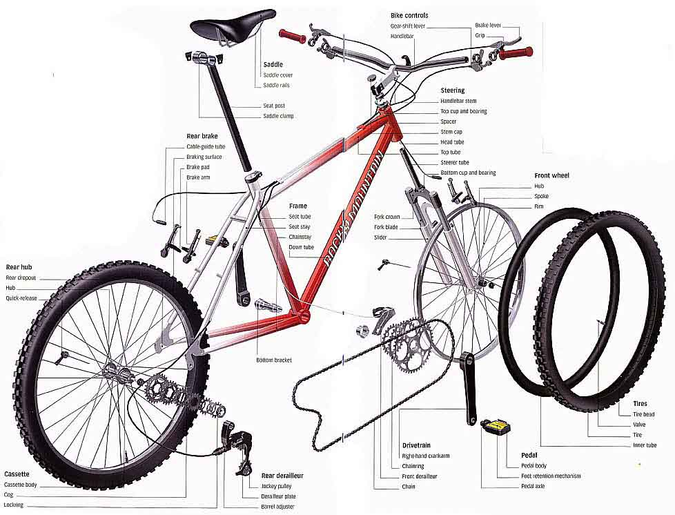 bicycle diagram basic modern road bike