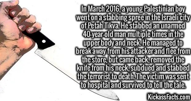 3492 Stabbing Victim-In March 2016, a young Palestinian boy went on a stabbing spree in the Israeli city of Petah Tikva. He stabbed an unarmed 40-year-old man multiple times in the upper body and neck. He managed to break away from his attacker and flee from the store, but came back, removed the knife from his neck, subdued and stabbed the terrorist to death. The victim was sent to hospital and survived to tell the tale.