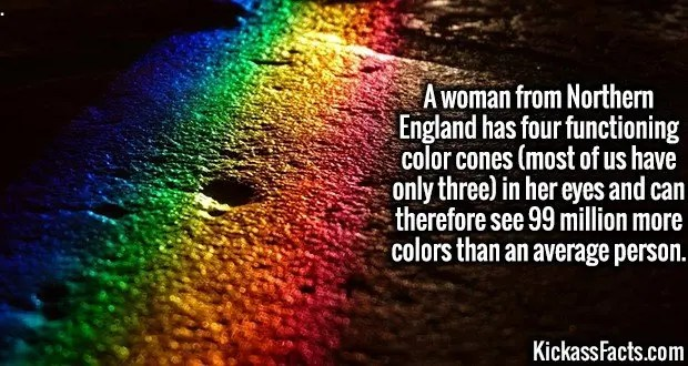 3997 Tetrachromat-A woman from Northern England has four functioning color cones (most of us have only three) in her eyes and can therefore see 99 million more colors than an average person.