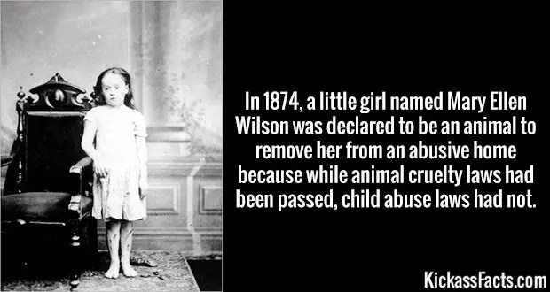 In 1874, a little girl named Mary Ellen Wilson was declared to be an animal to remove her from an abusive home because while animal cruelty laws had been passed, child abuse laws had not.