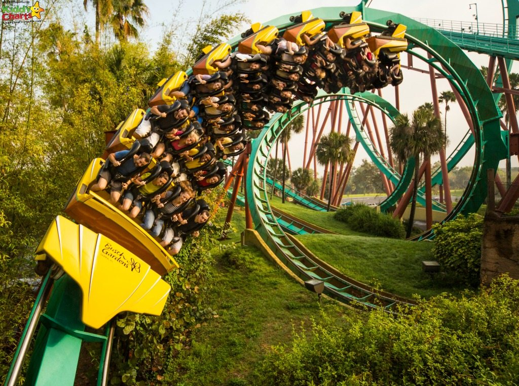 Why Busch Gardens Tampa Bay Is Perfect For Big And Little Kids   Roller  Coasters Busch