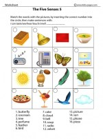 Five Senses Worksheets Kids