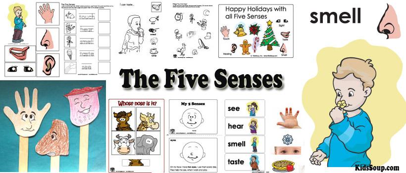 My Five Senses Preschool Activities, Lessons, and Printables KidsSoup