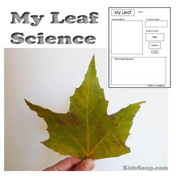 Fall, Autumn, and Leaves Preschool Activities and Crafts KidsSoup