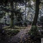 IW Cmentarz Centralny w Szczecinie