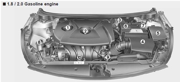 Kia Forte Engine compartment - Your vehicle at a glance - Kia Forte
