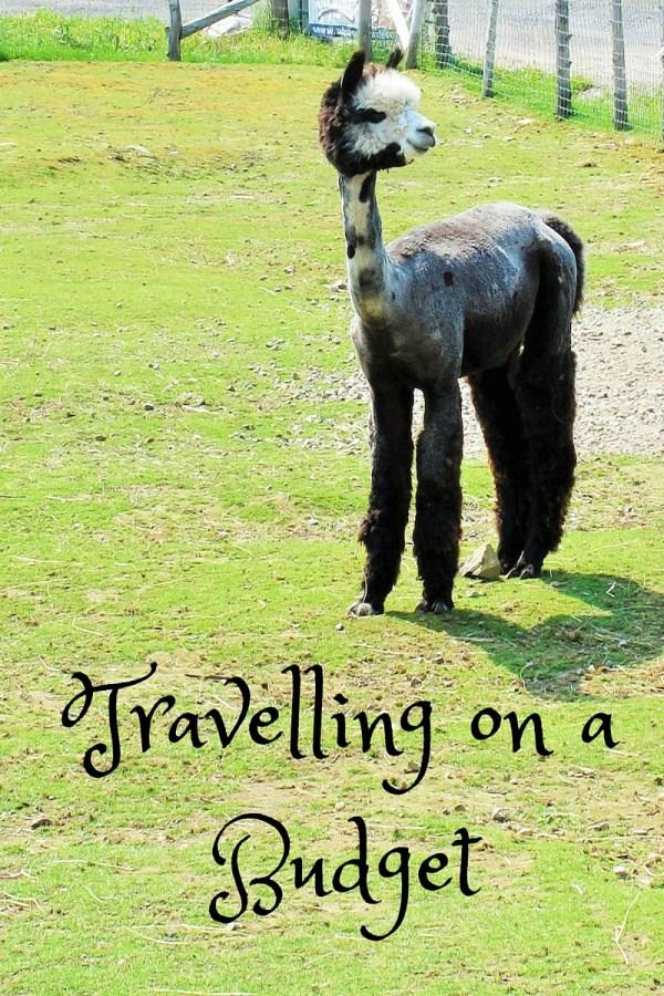 Travelling on a Budget, Kiku Corner