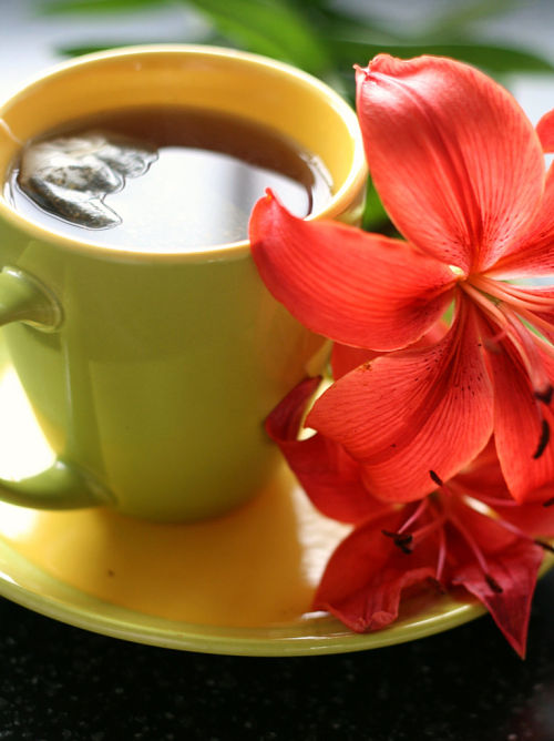 peppermint tea with flower