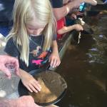 Panning for gold is hard work on a hot dayhellip