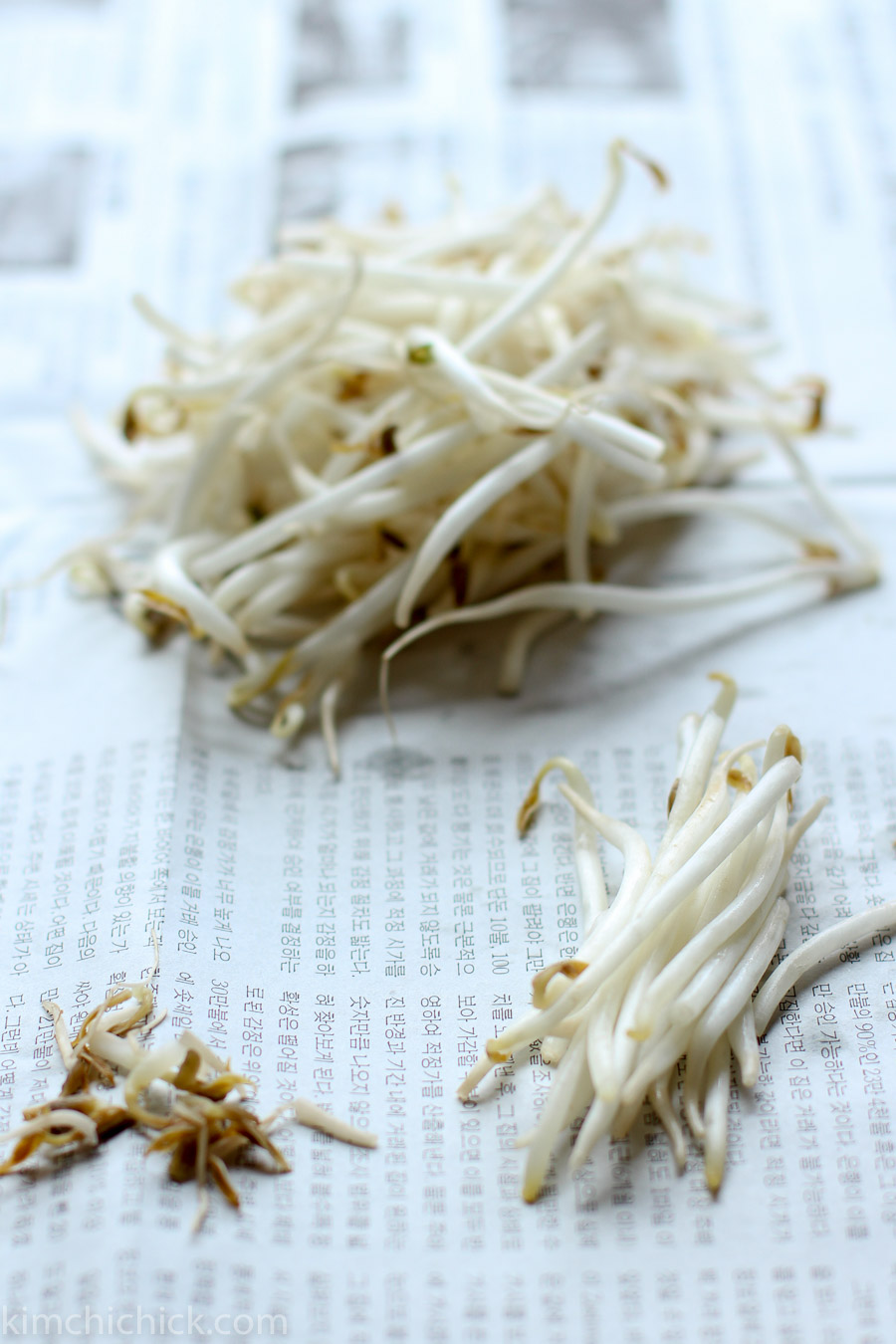 fresh Korean bean sprout salad | www.kimchichick.com