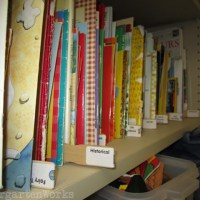 daunting once, beautiful now - classroom library organization made simple