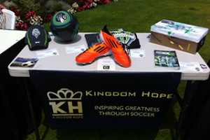 Kingdom Hope Banner 2 small