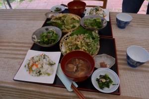 Kintsugi workshop, Nara, spring, 2016 (5)