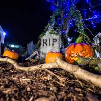 Chessington Howloween 2016 - Tricks and Treats for all the Family!