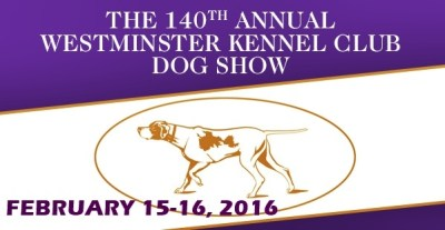 The Westminster Kennel Club Dog Show 16