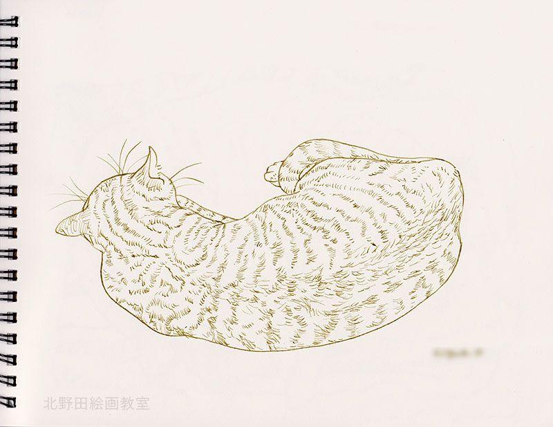 小太郎のペン画