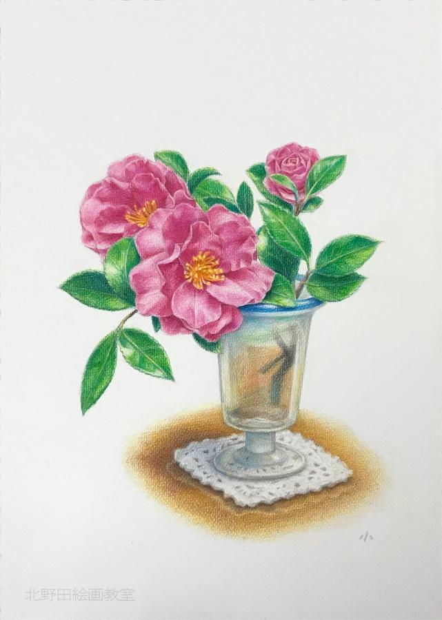 色鉛筆画の描き方・椿の花11
